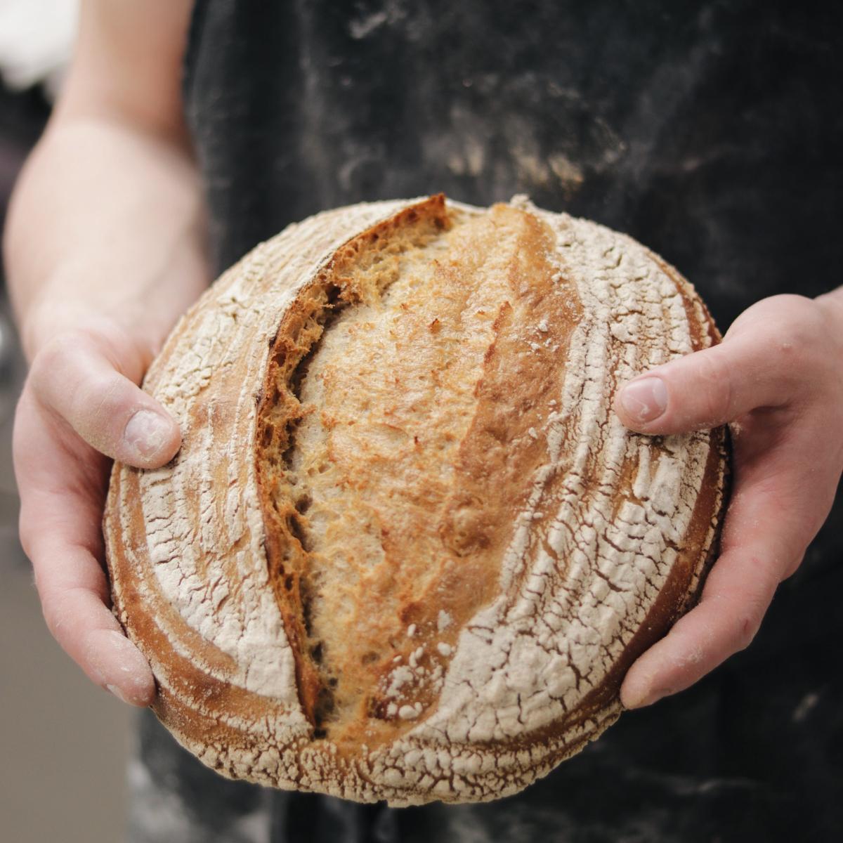Terz Berlin Brot
