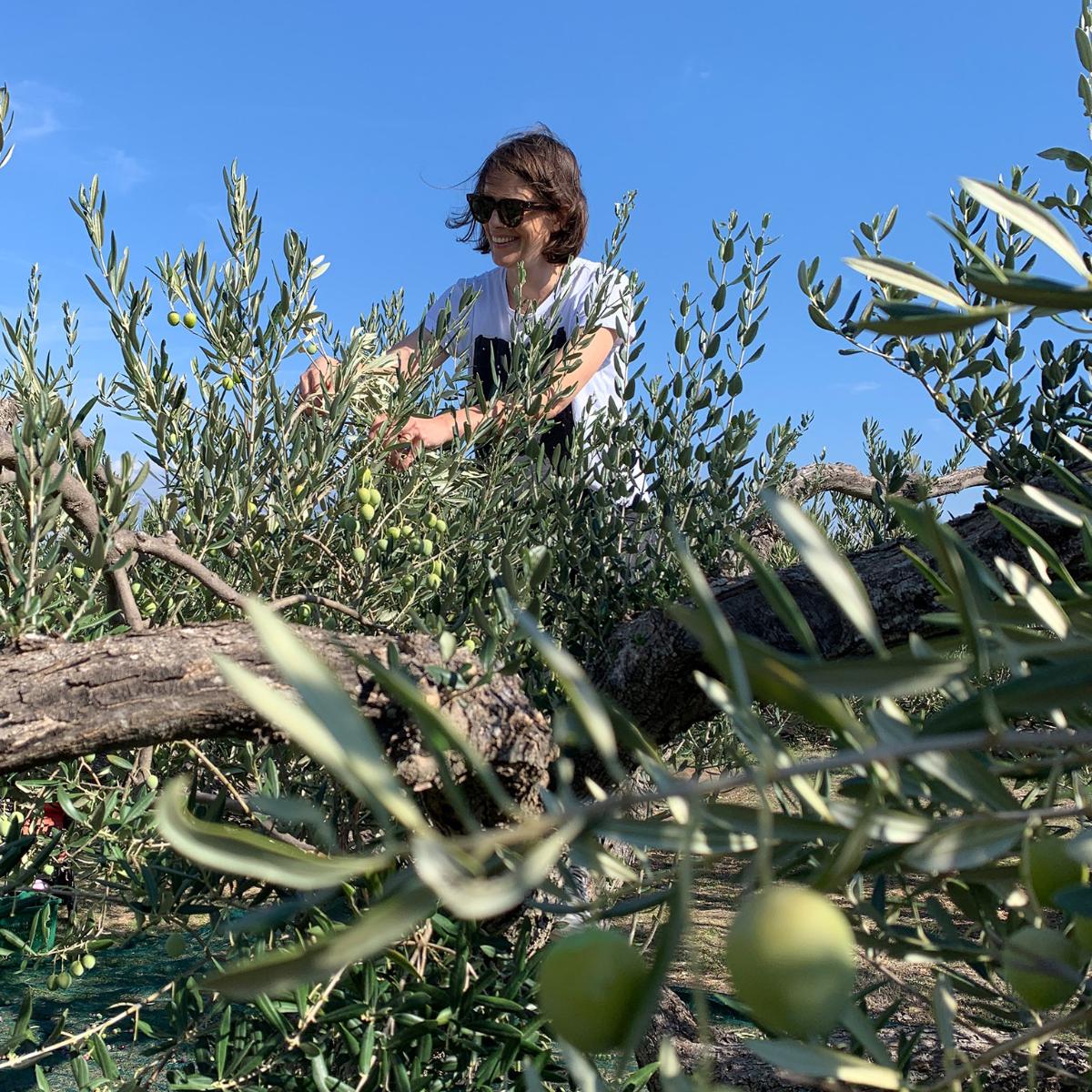 Tovar Oil Olivenoel (1)