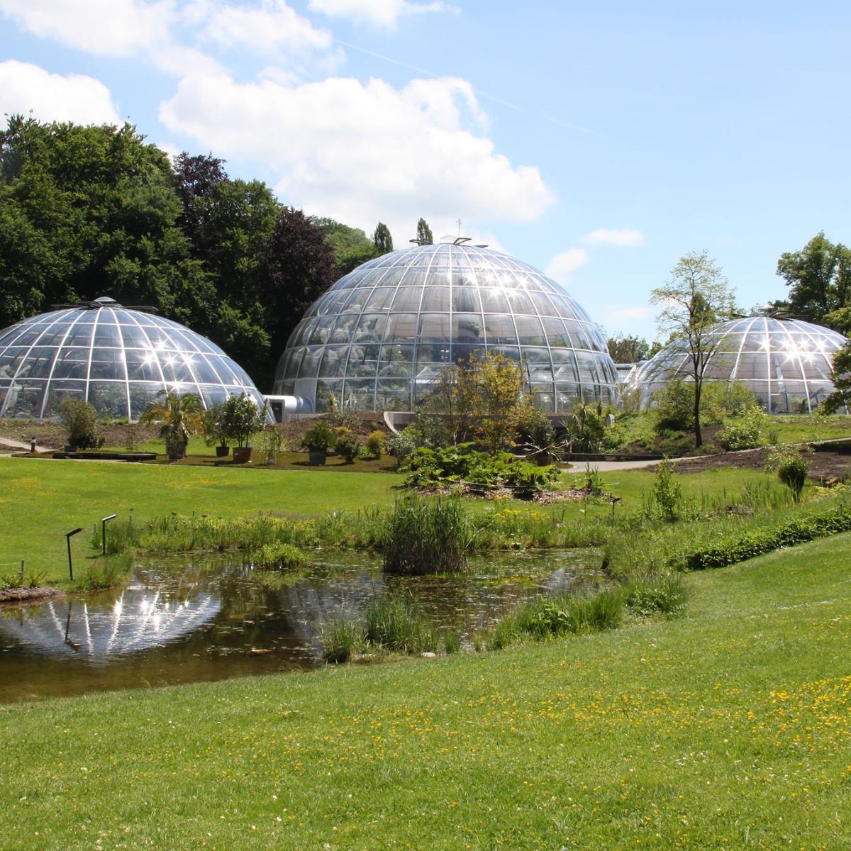 Botanischer Garten Zuerich Kuppeln