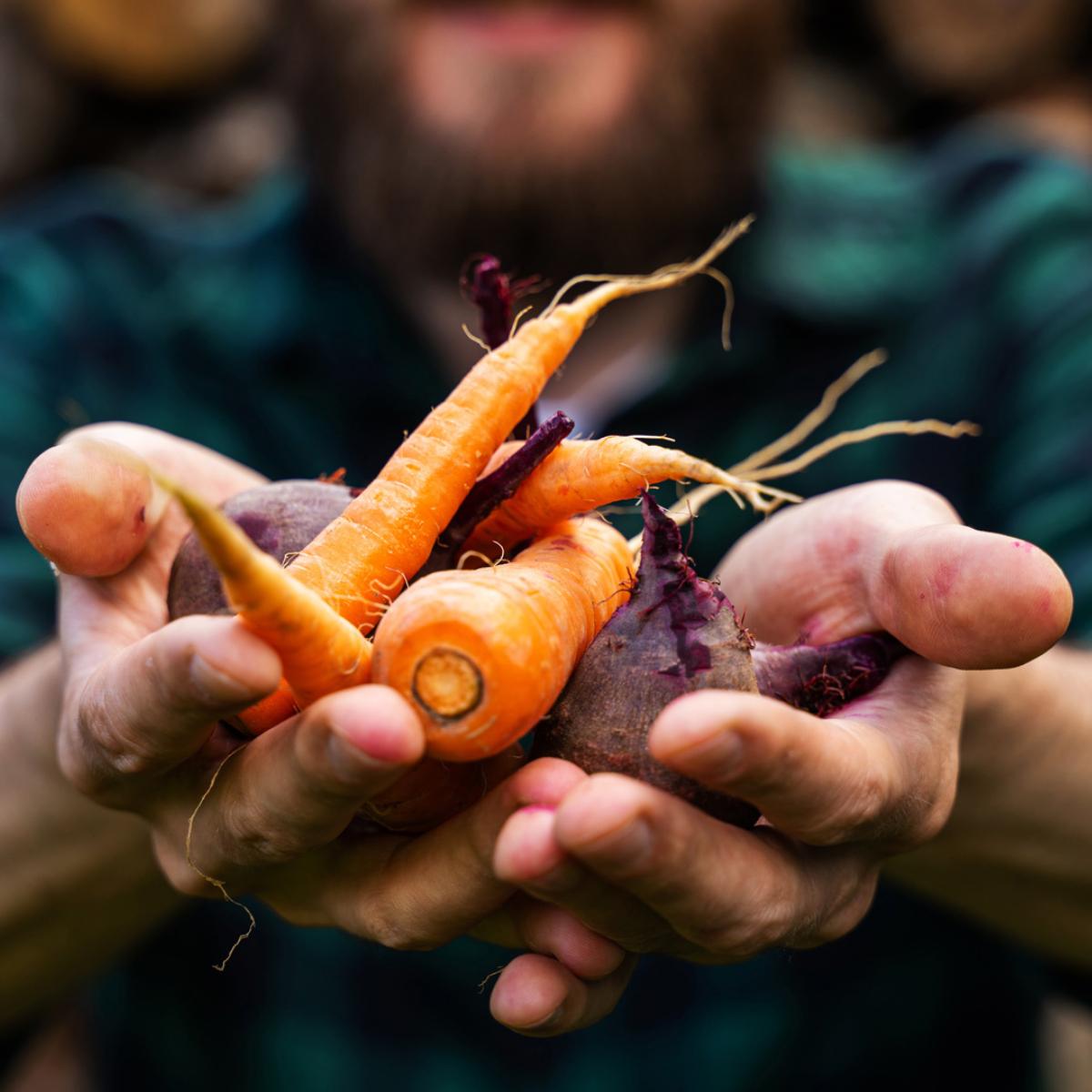 Food Week 2021 (3)