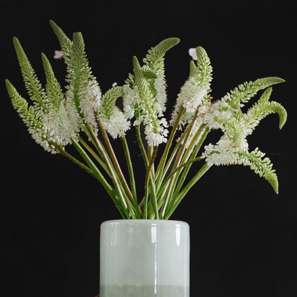 Zinnober Blumen (7)