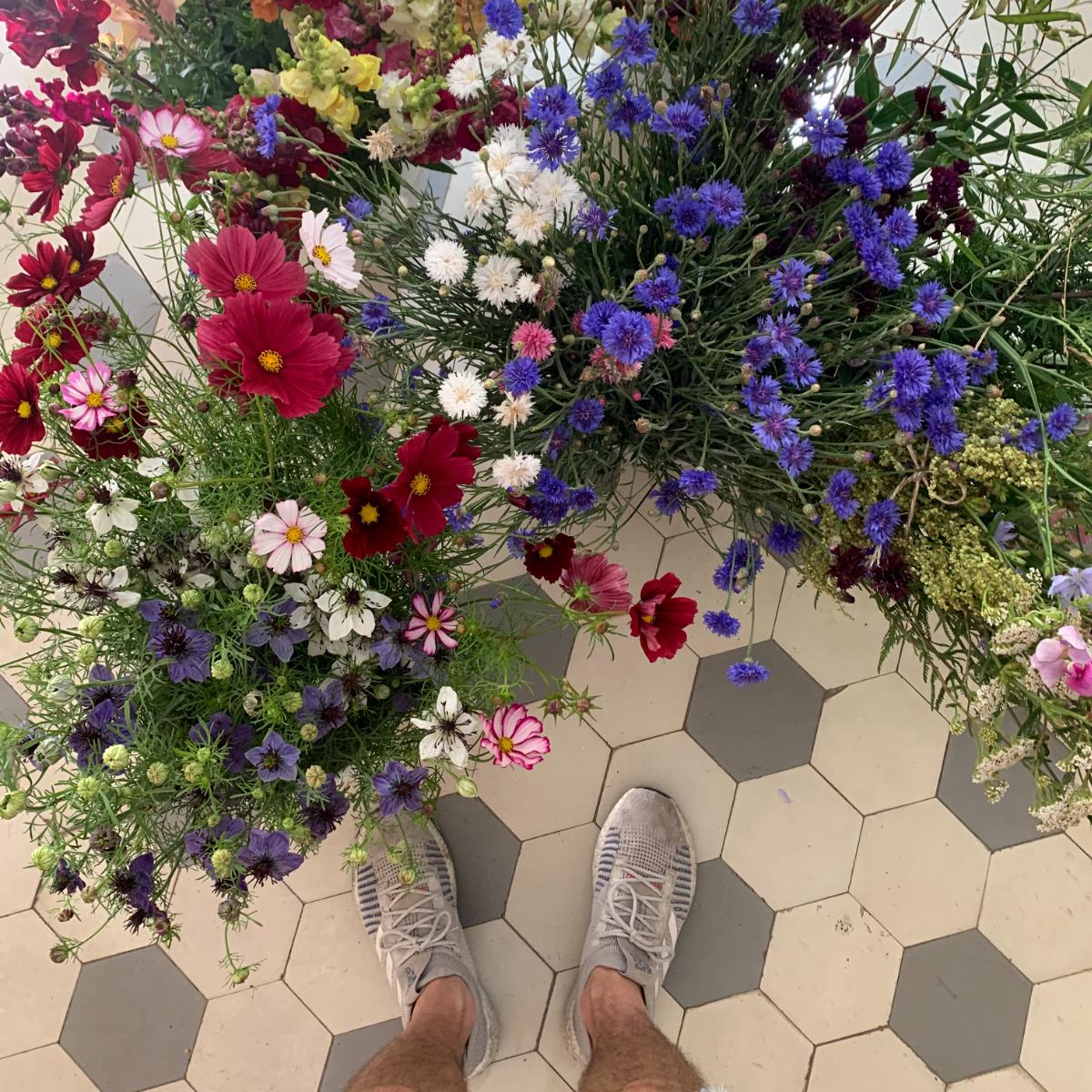 Maran44 Neukoelln Blumen