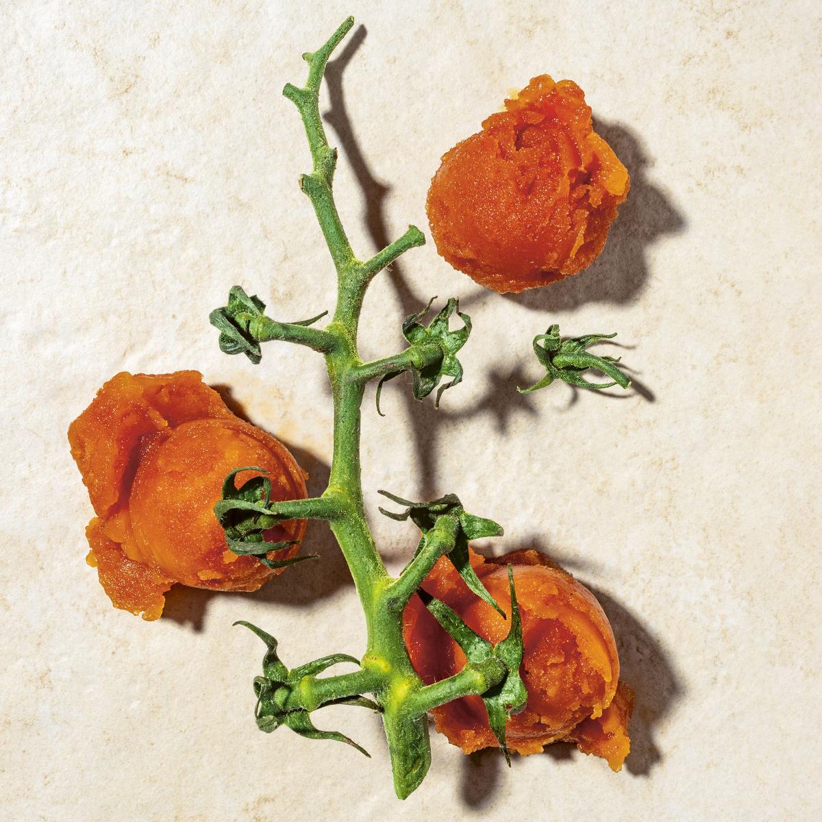 tomaten_tabasco_sorbet_Sorbet_gelato