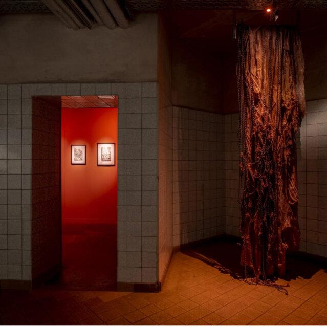 Ausstellungsansicht HR Giger & Mire Lee copyright Schinkel Pavillon